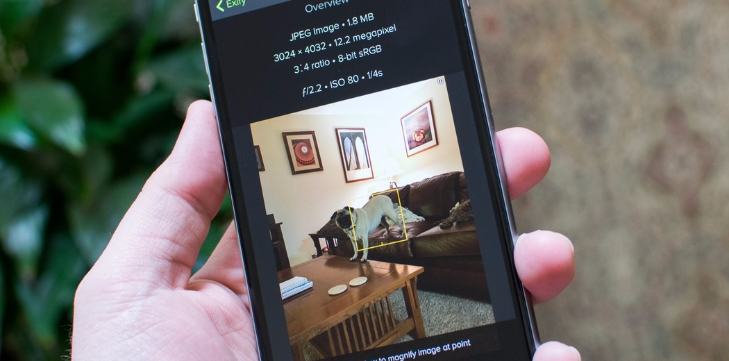 Exify is a toolkit for serious iPhone photographers (via @iMore)